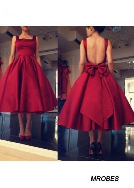 Short Homecoming Prom Evening Dress T801524710245